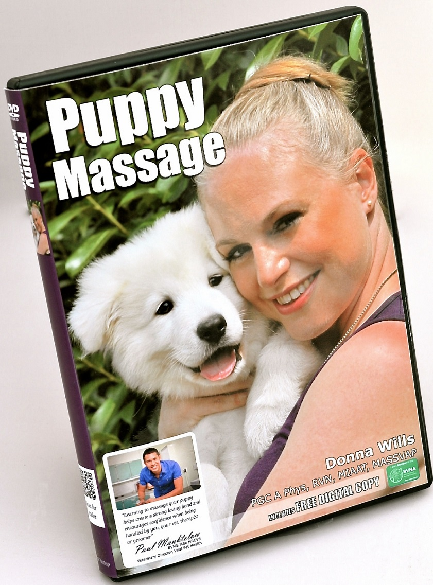 Puppy Massage DVD pre-release order. Release date 20th August 2016