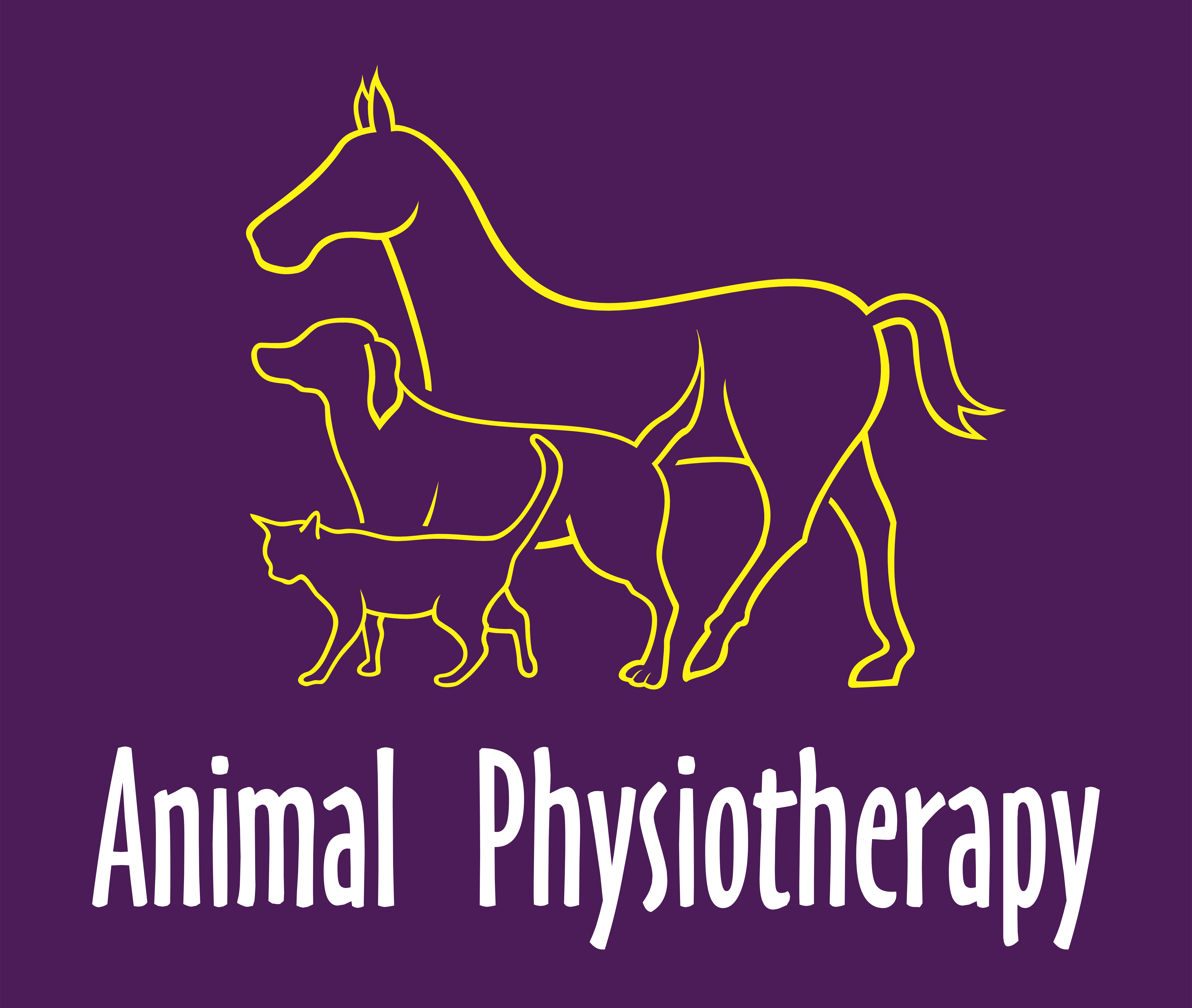 Animal Physiotherapy Ltd