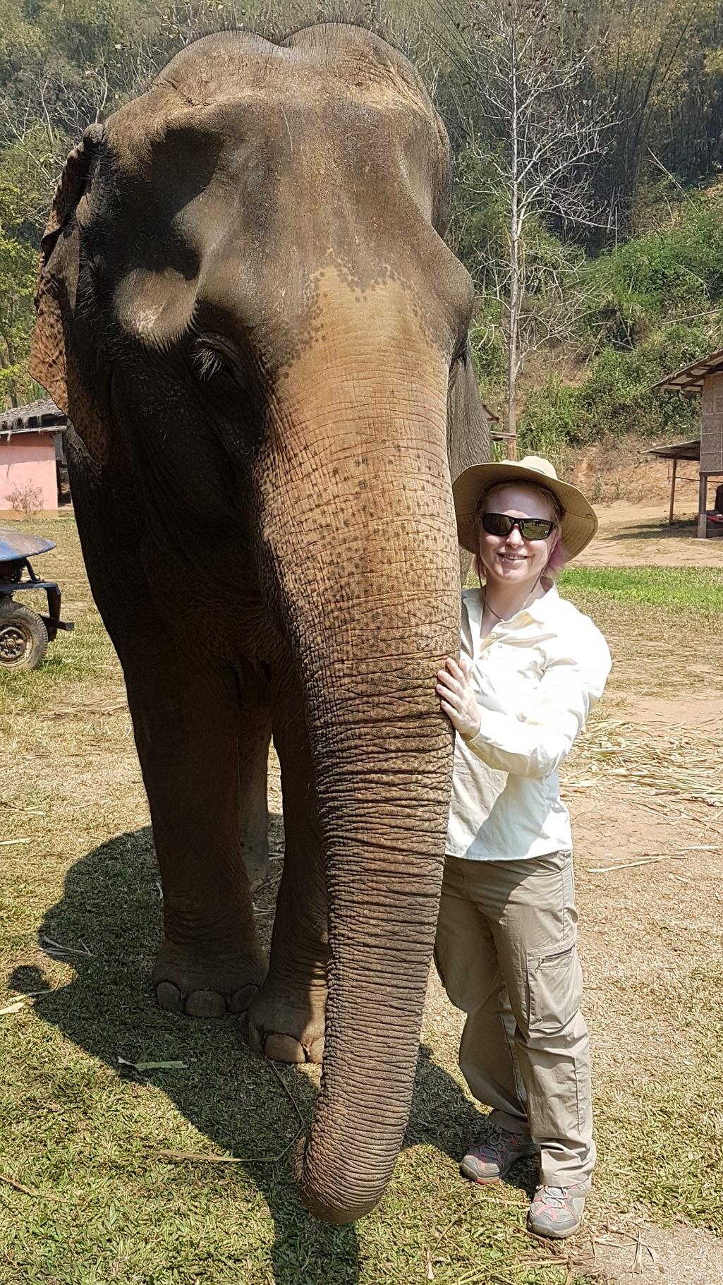 Thailand Elephant CPD